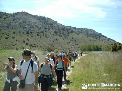 Sierra de la Pela - Barranco de Borbocid; excursiones organizadas; Gratis senderismo